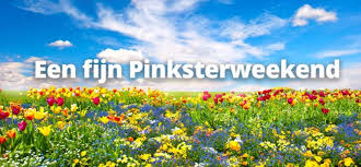 pinkster 2